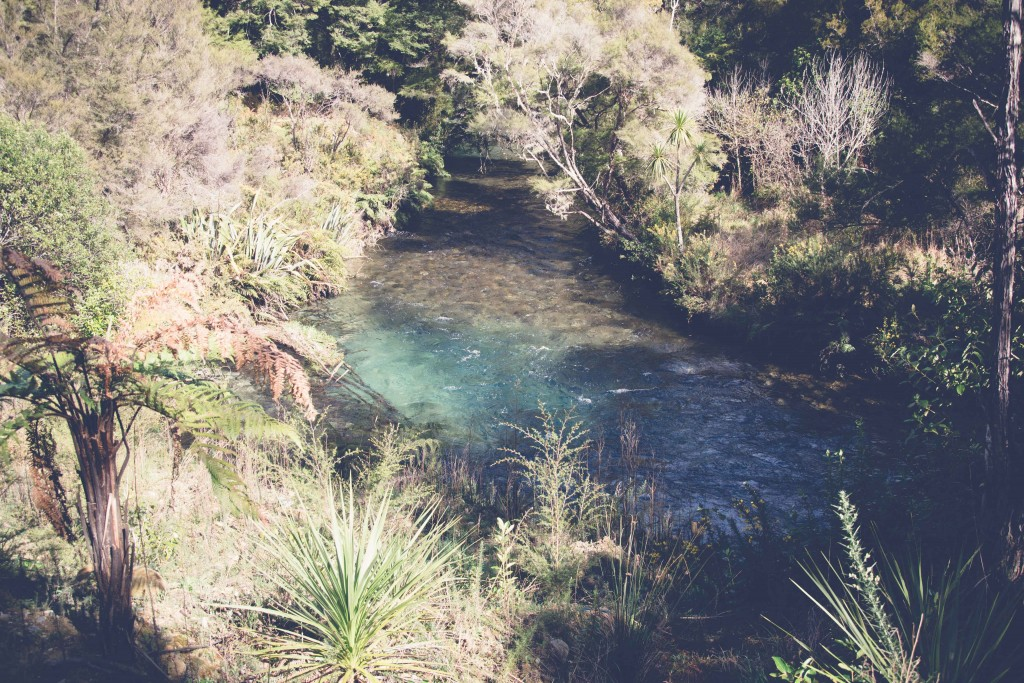 Collingwood, Pupu Springs-113