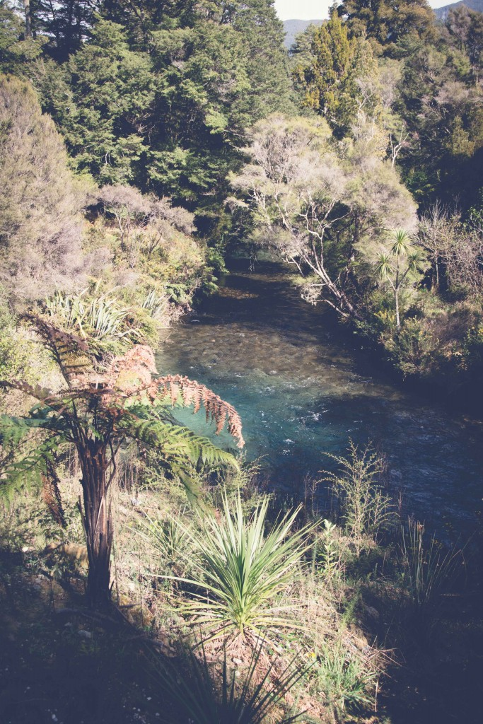 Collingwood, Pupu Springs-116
